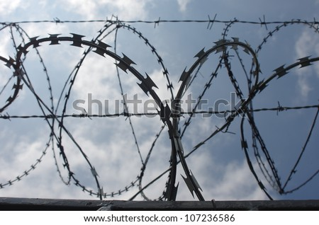 wire entanglements from prickly wire on white background - stock photo