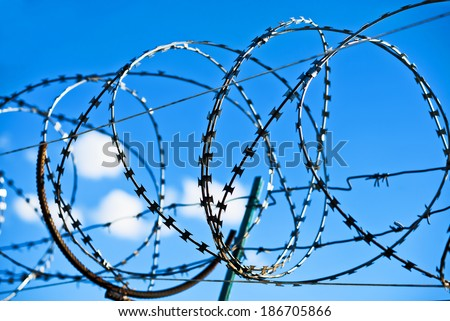 Wired fence with rolled barbed wires on blue sky background - stock photo