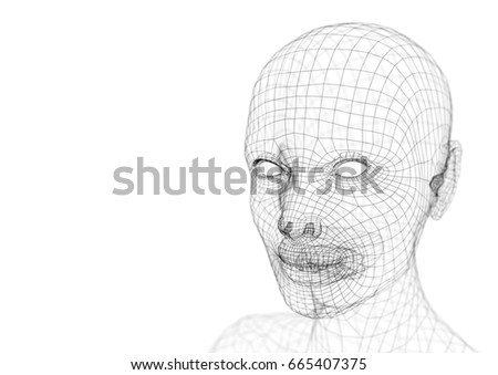 Wireframe Young Woman Head 3 D Illustration Stock Illustration ...