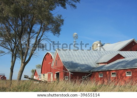 wisconsin dairy farm with red barns - stock photo