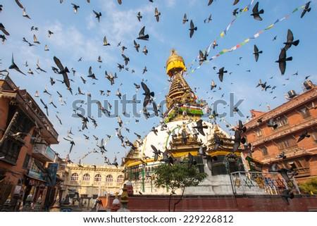 Wisdom eyes, Nepal - stock photo