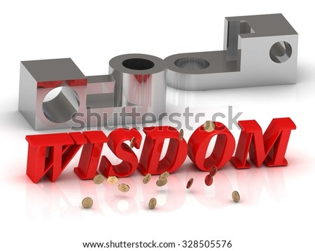 WISDOM- inscription of red letters and silver details on white background - stock photo