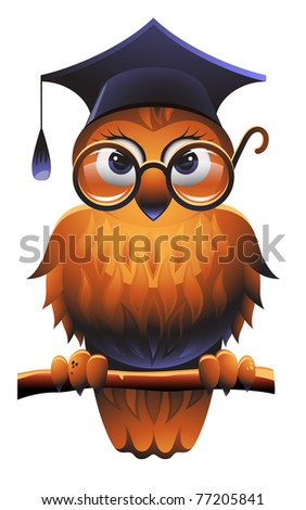 Wise owl wearing a square academic cap and glasses - stock photo