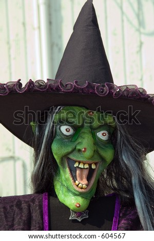 Witch hag - stock photo