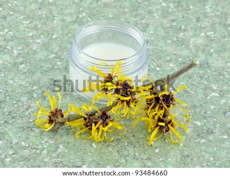 Witch Hazel Cream - stock photo