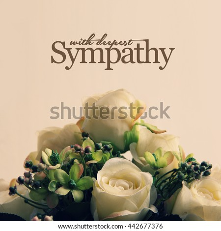 With Deepest Sympathy, white roses arrangement for sympathetic card or letter design - stock photo