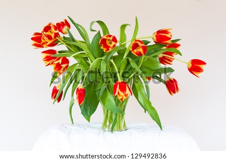 withered flowers on white background