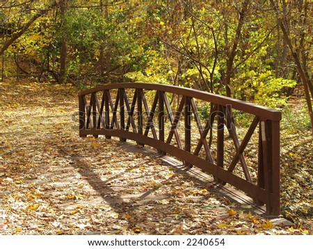 Woden bridge covered with leaves - stock photo