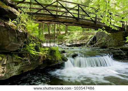 wolf creek from a different perspective - stock photo
