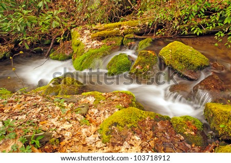 Wolf Creek in the Smoky Mountains in the Spring - stock photo