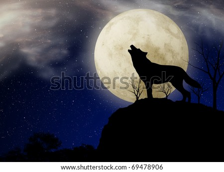 Wolf howling under the full moon - stock photo
