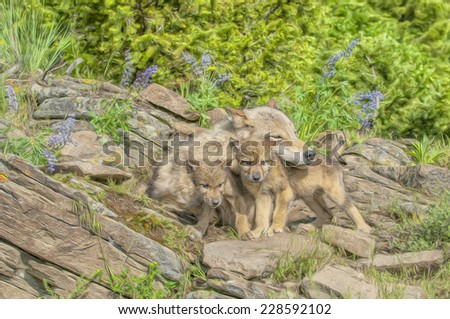 Wolf with cubs at den site, Montana - stock photo