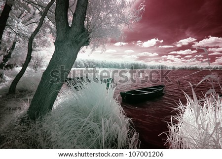 Wolsztyn Lake in Greater Poland, Poland. The infrared image - stock photo