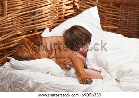 Woman and her dog comfortably sleeping in the bed - stock photo