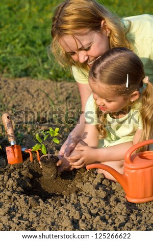 Woman and little girl in the garden planting the tomato seedlings together - stock photo