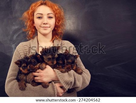Woman beautiful young happy with long red hair in sweater holding five small dogs. Girl and five yorkshire terrier. Five puppies in the arms of a girl on a dark background. - stock photo
