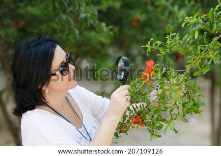 Woman botanist checking the growth of pomegranate flowers on the tree with magnifying glass - stock photo