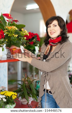 Woman chooses begonia in a flower shop - stock photo