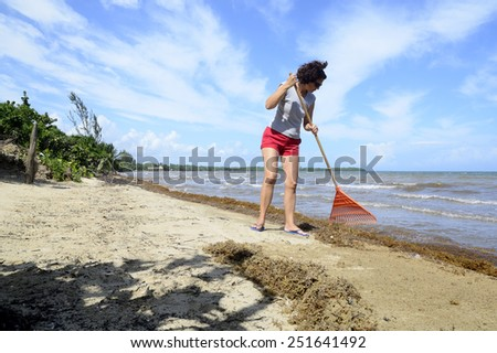 Woman clearing seaweed from the beach - stock photo