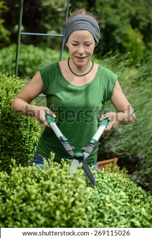 Woman cutting trimming hedge doing garden work - stock photo
