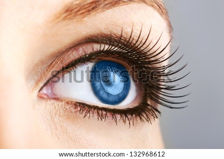 woman dark blue eye with false  extremely long lashes - stock photo