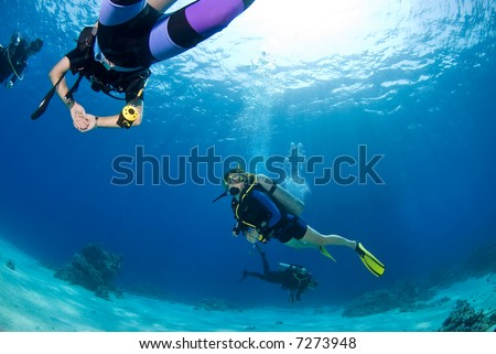 Woman diver exploring the reef