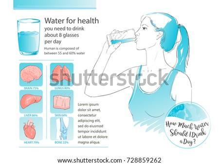 Woman Drinking Glass Water Human Body Stock Illustration 728859262 ...