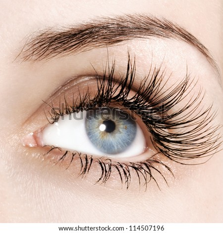 Woman eye with extremely long eyelashes - stock photo