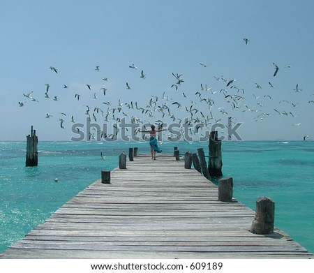 Woman flying off with seagulls - stock photo