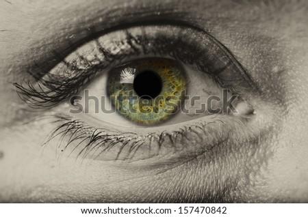 woman green eye isolated macro - stock photo