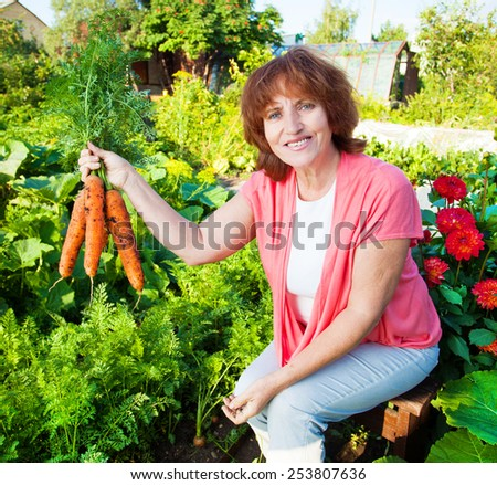 Woman grows harvest in the garden. Senior with carrot - stock photo