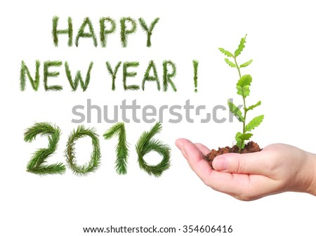 Woman hand, holding a seedling and number two thousand sixteen - New year 2016 and words of congratulation Happy New Year. All numbers and words are made of a pine tree branches - stock photo