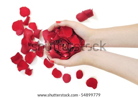 woman hand holding rose petals in hand and representing skin and hand care concept
