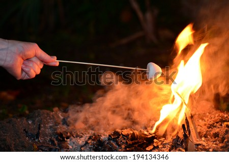Woman hand roast Marshmallow on camp fire. - stock photo