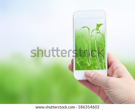 Woman hand taking picture with  smart phone against spring green background - stock photo