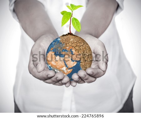 "Woman hands holding tree planting on globe warming, Save the Earth Concept, ""Elements of this image furnished by NASA"" - stock photo"