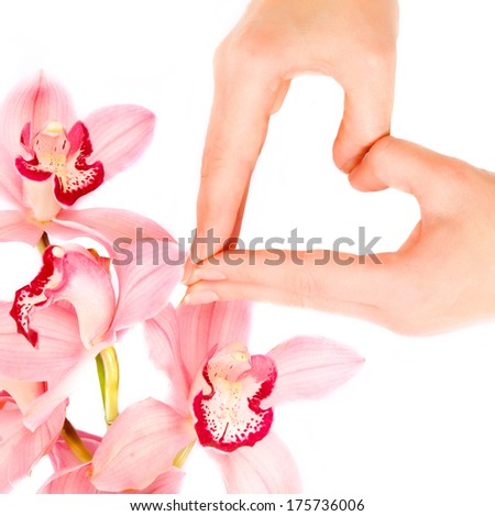 Woman hands in shape of heart and  Orchid flowers - stock photo
