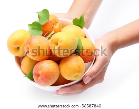 Woman hands keeping crockery with mellow apricots. Isolated on a white background.
