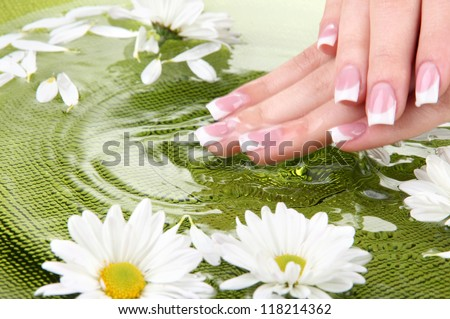 Woman hands with french manicure and flowers in green bowl with water - stock photo