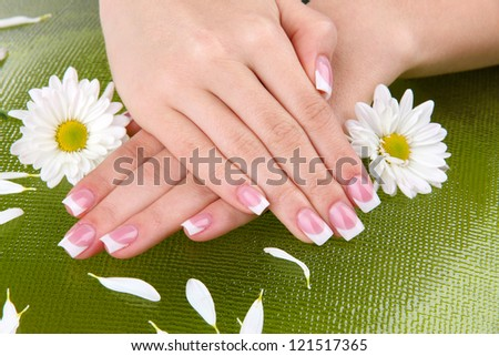 Woman hands with french manicure and flowers on green background