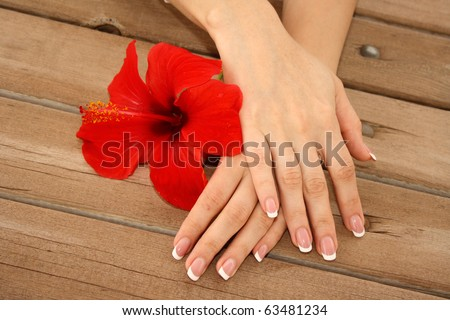 Woman hands with french manicure holding red flower - stock photo
