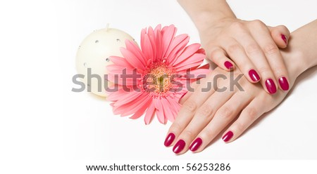 Woman hands with pink manicure, flower and candle - stock photo