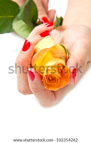 Woman hands with red manicure and rose - stock photo