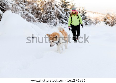 Woman hiking in winter mountains with akita dog. Female hiker walking on white snow with her dog friend, sport and recreation outdoors in forest nature, Poland. - stock photo