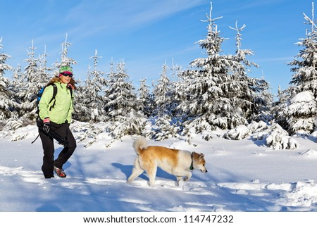 Woman hiking in winter mountains with akita dog, Poland. Happy hiker walking on powder snow in sunny white forest. - stock photo