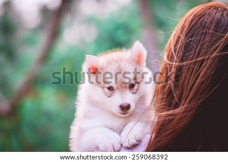 woman holding a dog in the nature - stock photo