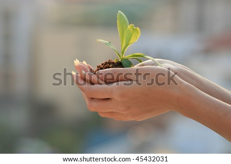 Woman holding a plant over city buildings, Thailand.