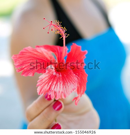 Woman holding a red tropical hibiscus flower.  Very shallow depth of field.