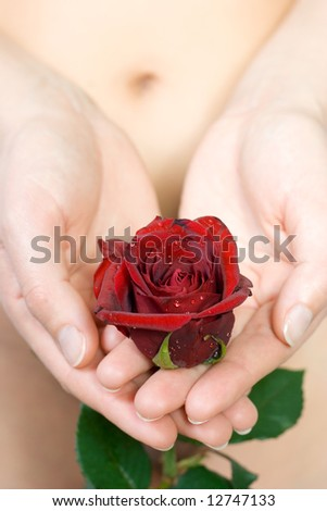 Woman holding a rose - stock photo