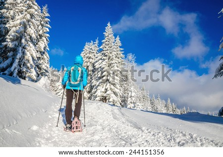Woman in blue jacket and sticks walking in winter scenery on hiking trail - stock photo